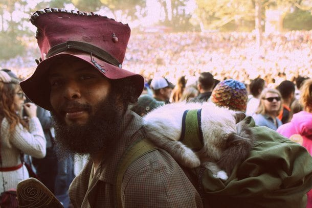 The Scene: Hardly Strictly Bluegrass Review
